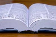 As palavras mais compridas do dicionário. Quais são?